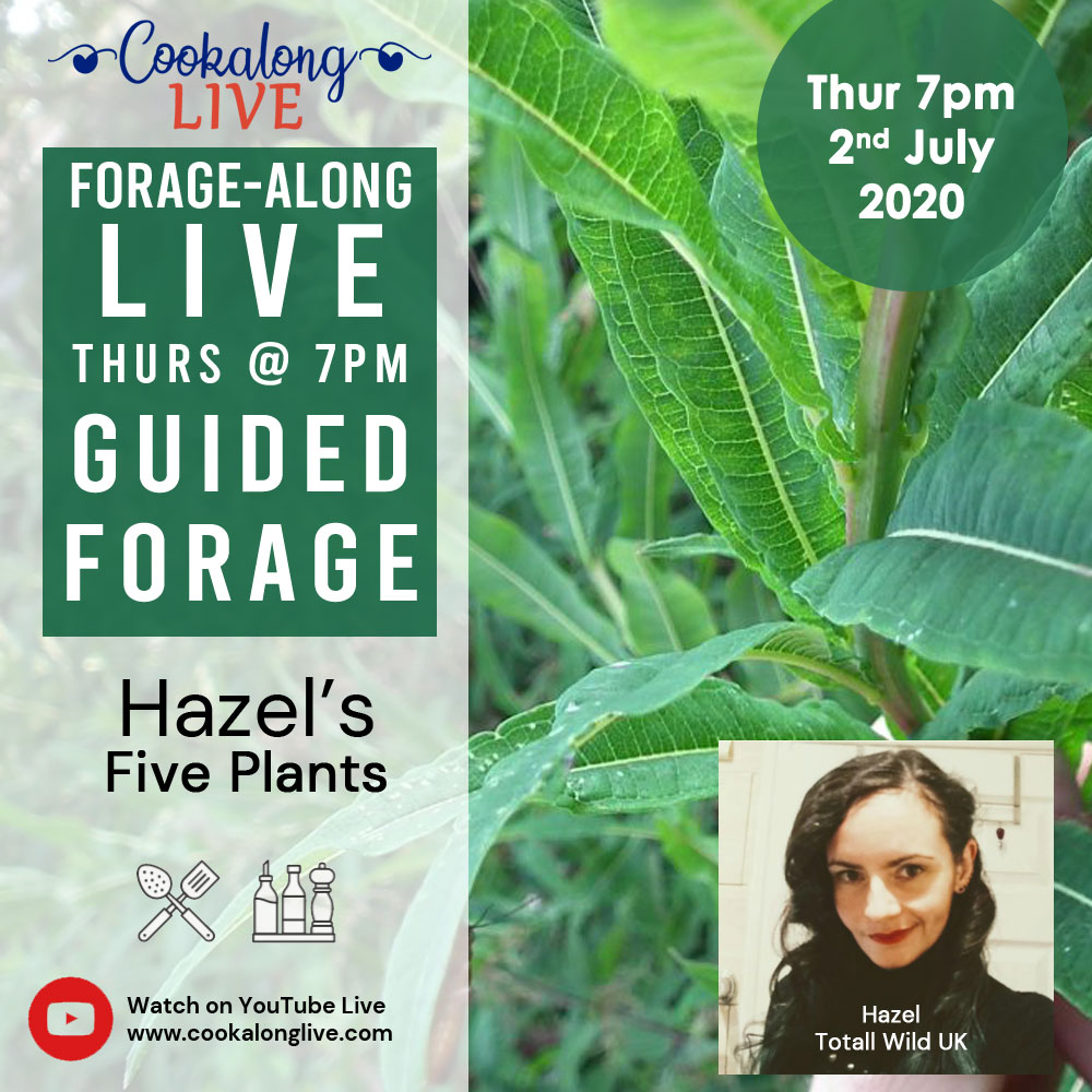 Forage-along LIVE